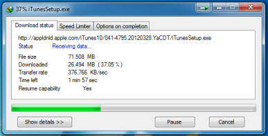 When tested in Internet Download Manager